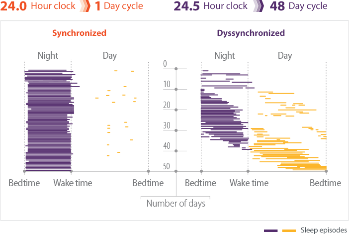 Raster plot chart comparing the sleep episodes of patients with synchronized versus dyssynchronized sleep-wake cycles